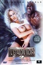 L'étalon noir 2 - DVD - Le retour du plus grand sexe du monde.