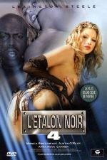 L'étalon noir n 4 - DVD - Lexington Steele et sa braguette magique.